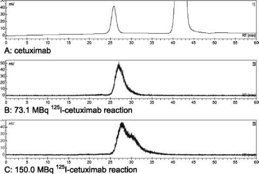 HPLC chromatograms of125I-cetuximab after PD10 column purification. Channel A shows the UV absorption of cetuximab at 280 nm at a retention time of 26 min (large peak at 42 min is from ascorbic acid). Channels B and C represent the radioactive signal of 125I-cetuximab from the 73.1 MBq and 150.0 MBq reaction demonstrating retained and impaired integrity, respectively.