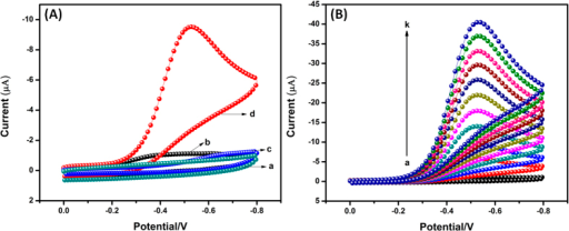 (A) Cyclic voltammograms for the reduction of H2O2 on bare GCE (a,c) and Ag2MoO4 modified GCE (b,d) in absence (a,b) and presence (c,d) of 200 μM H2O2 containing N2 saturated 0.05 M PBS (pH 7) at a scan rate of 50 mV/s. (B) Cyclic voltammograms of Ag2MoO4 modified GCE in N2 saturated 0.05 M PBS (pH 7) in the absence and presence of H2O2 with different concentrations (a–k: 0 to 1 mM) at a scan rate of 50 mV/s.
