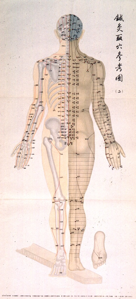 <p>Off-white poster with black lettering.  All lettering appears to be in Chinese characters.  Visual image is an illustration of a dorsal view of a human body, one half showing the skeleton and one half showing the musculature.  Acupuncture points are noted all across body.</p>