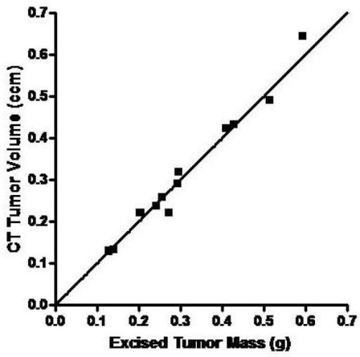 Correlation of In Vivo Micro-CT and Micro-SPECT Tumor Measurements with Ex Vivo Analysis. Mice with MV-NIS-injected BxPC-3 flank tumors (n=12) were imaged with 99mTcO4 pinhole micro-SPECT/CT. Immediately after imaging, mice were euthanized and tumors were excised, weighed, and counted in a dose calibrator. A, CT volume measured with region-of-interest software image analysis was highly correlated with ex vivo tumor mass (r2 = 0.977, p<0.0001). B, Micro-SPECT quantitation of tumor activity was highly correlated with ex vivo tumor activity (r2 = 0.966, p<0.0001).