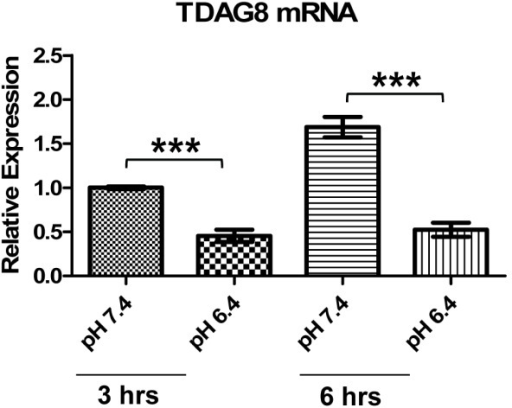 TDAG8 mRNA is decreased by acidosis in U937 cells. U937 cells treated with pH 7.4 or pH 6.4 for three and 6 h were subject to total RNA isolation and real-time RT-PCR using TDAG8-specific primer probes. β-actin was used as an internal control for normalization. TDAG8 expression under the 3-h pH 7.4 treatment was set as one. The data were derived from three biological replicates. Error bars indicate ±SEM. ***p < 0.001.