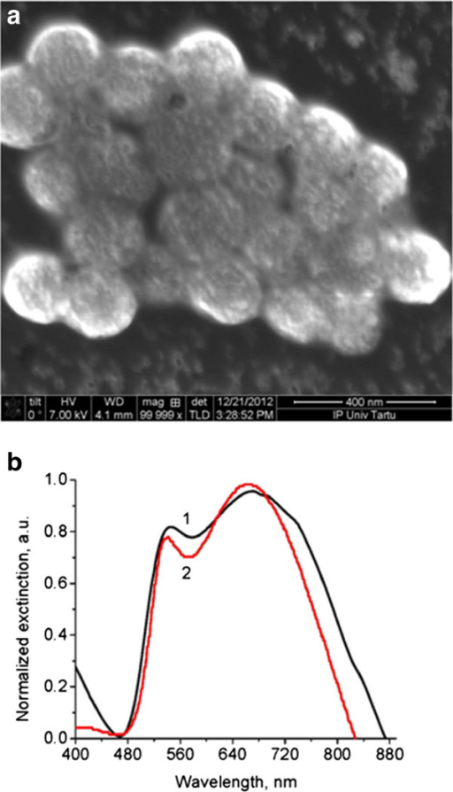 SEM image (a) and light extinction spectra (b) of spherical gilded nanoparticles.