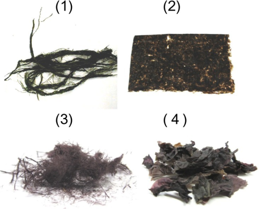 Various types of dried green and purple lavers are Vitamin B12 sources: (1) a Japanese green laver, (Suji-aonori, Entromopha prolifera); (2) ordinary purple lavers (Porphyra sp.; nori, which has been formed into a sheet and dried); (3) Taiwan purple laver (Hong-mao-tai, Bangia atropurpurea); and (4) New Zealand purple laver (Karengo, a mixture of Porphyra cinnamomea and Porphyra virididentata).