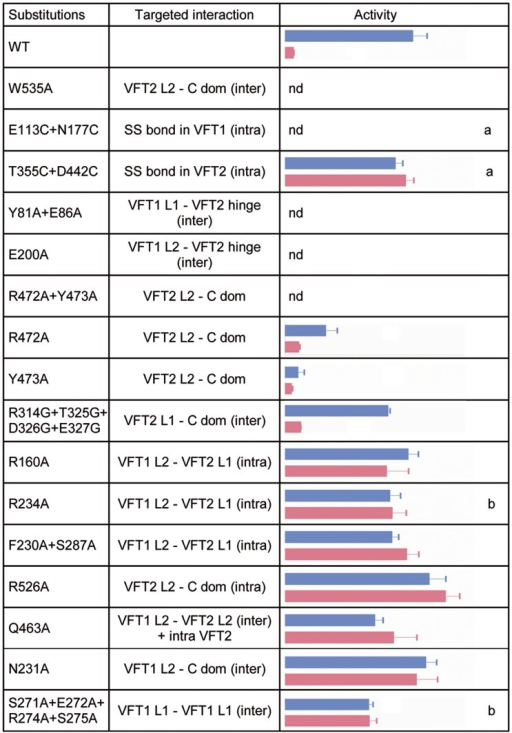 In vivo effects of the substitutions in BvgS.A lacZ reporter gene under the control of the Bvg-regulated ptx promoter was used for determination of BvgS kinase activity in standard or modulated culture conditions. Blue and pink bars indicate kinase activity levels of bacteria producing the indicated BvgS variants and grown without or with 8 mM nicotinate, respectively, with the standard errors of the mean calculated from three distinct experiments. The middle column indicates the interfaces in which the targeted interactions are located, with inter- and intra-protomer interfaces designated 'inter' and 'intra', respectively. Nd, no β-gal activity detected; a, wild type activity and/or modulation recovered when cells were grown in the presence of TCEP; b, BvgS variants only responsive to high nicotinate concentrations (20 mM). The full set of data is shown in S5 Fig.