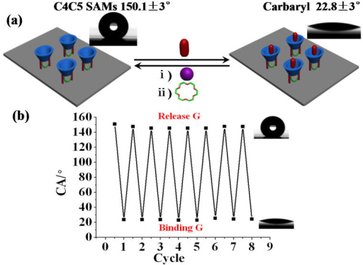 (a) CA relationship images for C4C5 SAMs with G, K+, 18C6. (b) Cycling experiment of K+-ion controlled switch which indicate a good reversibility between hydrophobicity and hydrophilicity.