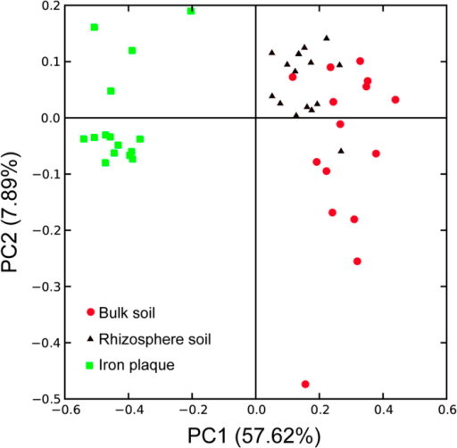 Principal component analysis (PCoA) derived from pairwise unweighted UniFrac distances of 16S rRNA gene between microbial communities of rhizosphere soil (black triangle), bulk soil (red circles) and iron plaque (green squares).