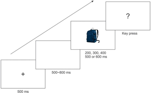 Illustration of a trial sequence. Note that the target picture was a blue backpack, an orange backpack, and a trolley bag in Experiments 1, 2, and 3, respectively.
