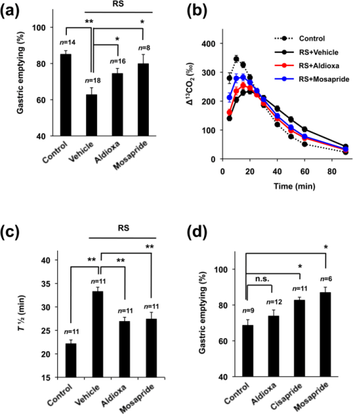 Effect of aldioxa on restraint stress-induced delayed gastric emptying and normal gastric emptying.Mice fasted for 18 h were orally administered aldioxa (200 mg kg−1) (a–d), mosapride (7.7 mg kg−1) (a–d), cisapride (5 mg kg−1) (d) or vehicle (1% methylcellulose) (a–d) and delayed gastric emptying was induced by restraint stress (RS) (a–c). One hour after the administration of each test compound, gastric emptying was measured using the phenol red method (a,d) or the [13C]-labeled acetic acid breath test (b,c) as described in the legend of Fig. 1. Values are mean ± s.e.m. *P < 0.05; **P < 0.01 (Tukey test). n.s., not significant. Experiments were replicated at least two times.