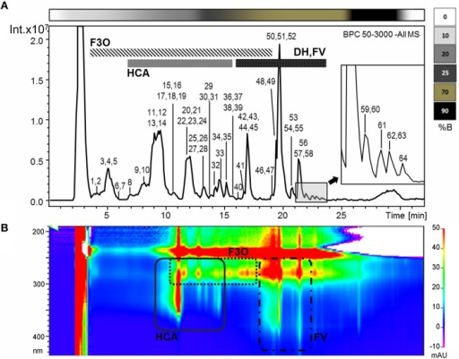 (A) Base peak chromatogram of a Garganega methanolic extract recorded in negative ionization mode during RP-HPLC-ESI-MS analysis. The peaks numbers correspond to the metabolites identified in the Supplementary File 1 (column A) (B) Bidimensional RP-HPLC-DAD chromatogram recorded within the wavelength range 190–600 nm. F3O (flavan-3-ols and oligomers), HCA (hydroxycinnamic acid derivatives), DH (dihydroflavonol glycosides), FV (flavonol glycosides). The upper bar refers to the percentage of solvent B within the mobile phase.