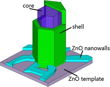 The schematic model of one N-doped ZnO MR with core-shell-structured luminescent inhomogeneity