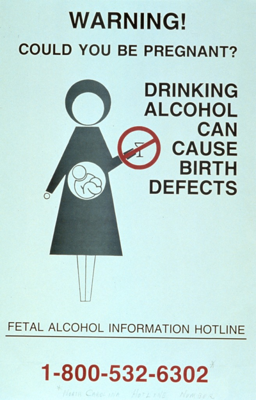 <p>White poster with red and black lettering.  Title at top of poster.  Visual image is an abstract illustration of a woman.  A cutaway in the woman's abdomen reveals a fetus; there is a red &quot;do not&quot; symbol superimposed on the drink the woman holds in one hand.  Caption next to image.  Bottom of poster features a phone number for a fetal alcohol hotline.</p>