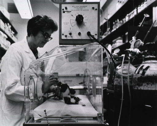 <p>Publicity photograph for the dedication of buildings 36 and 37.  Shown here is Jane Jehle, a biological laboratory technician with the Laboratory of Cerebral Metabolism, NIMH, bottle-feeding a 15-day-old beagle puppy in an Isolette.</p>