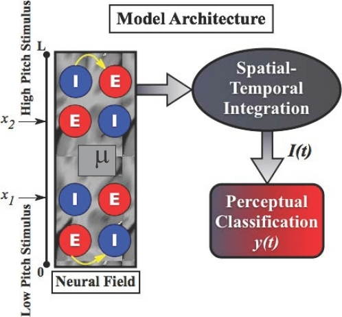 Cortical architecture of the model.The neural field is illustrated by the rectangular box showing the                                neural activity                                    μ(x,t)                                composed of inhibitory and excitatory neurons. The input                                    s(x,t) is                                provided at locations xi via the                                Gaussian localization function  with width . The explicit model parameters used in the                                simulations are given in [126].