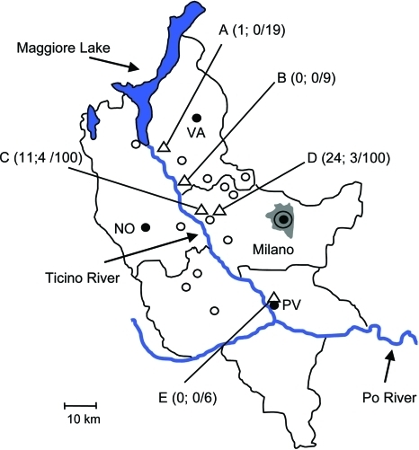 Collection sites (triangles A–E) of Ixodes ricinus ticks in the counties of Milano, Pavia, and Varese, Po River Valley, Italy, 2008. Ticks were collected in rural or suburban areas of the municipalities of Somma Lombardo (collection site A), Lonate Pozzolo (B), Magenta (C, D), and Pavia (E). The 3 numbers in parentheses for each collection site indicate number of tick nymphs positive for Borrelia afzelii, number of nymphs positive for B. lusitaniae, and number of nymphs examined by PCR. The adult specimen positive for B. afzelii was collected at site D. Empty circles indicate towns with 10,000–50,000 residents; black circles indicate towns with >50,000 residents. NO, Novara; PV, Pavia; VA, Varese. Milano residents = 4 million persons.