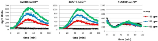 Citrinin activates gene expression from CRE and AP-1 promoter elements in a dose dependent fashion. Artificial promoter-luciferase constructs were used, which contained multiple repetitions of the same cis-element: CRE, AP-1 or STRE as indicated. The indicated citrinin doses were applied at time point 0 to the yeast cultures and the light emission continuously monitored. Data shown are mean values from three independent biological samples. SD < 15%.