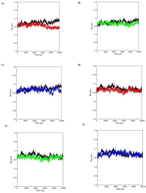 Radius of gyration of Protein during a 10-ns MDS for WT and MT p53C versus time.A), B), C) represent apo simulation D), E), F) represent holo simulation. Black: WT, red: R110P, green: P151T and blue: P278A.