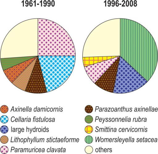 "Pie diagrams of the average cover of the most important species for the periods 1961–1990 and 1996–2008, all sites confounded.Only the species with mean cover higher than 5% are considered, all the others are grouped within ""others""."