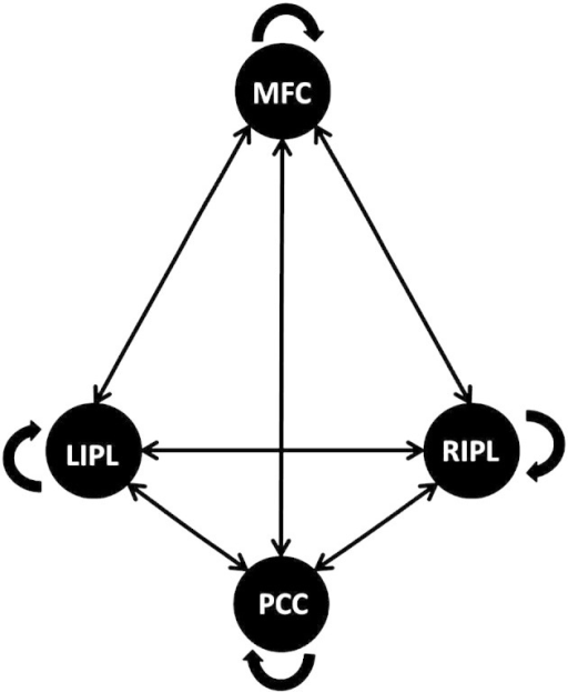 Schematic representation of the fully and reciprocally connected model.All possible connections are displayed between the medial frontal cortex (MFC), the posterior cingulate cortex (PCC), the left inferior parietal lobule (lIPL), and the right inferior parietal lobule (rIPL).