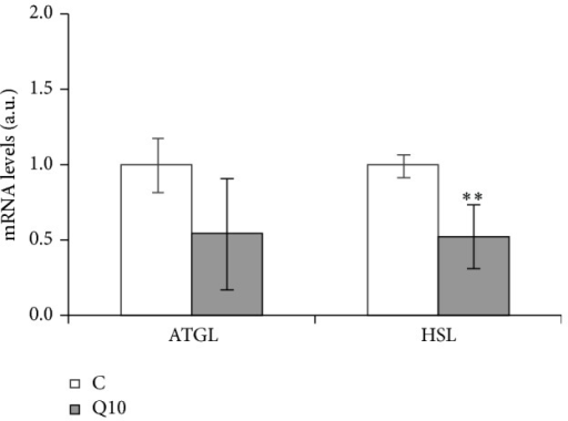 Effects of 10 μM of quercetin (Q10) on the gene expression of lipases, ATGL and HSL, in 3T3-L1 mature adipocytes treated for 24 h. Values are means ± SEM. Comparisons between each treatment and the controls were analyzed by Student's t-test. The asterisks represent differences versus the controls (**P < 0.01).
