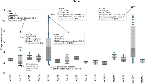Box plot of expression levels for AQP1, AQP4, CXCR4, and PROM1 in two glioblastoma stem-like clonal sublines (GS-3 and GS-7) and their associated passaged parental lines and neurospheres. Interactive version of figure is available at https://public.tableausoftware.com/views/glioma_aqp/figure2.
