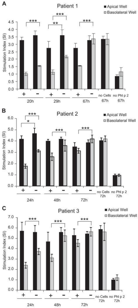 Inhibition of transepithelial migration of Phl p 2 by P2/ICAM1 conjugates leads to decreased basophil activation with basolateral samples. Samples obtained from apical and basolateral compartments of Transwell cultures were incubated with blood samples from 3 patients allergic to Phl p 2 (A-C), and basophil activation was measured by determining upregulation of the surface marker CD203c on basophils by using flow cytometry. CD203c upregulation expressed as the stimulation index is displayed on the y-axis. Results are means of triplicates, and error bars indicate SDs. *P < .05, **P < .01, and ***P < .001, ANOVA and linear contrasts.