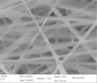 SEM image PAN–CNT nanocomposite with 1 % MWCNTs