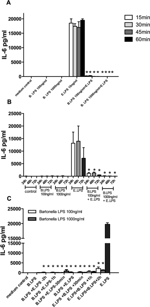 Kinetics of the B. quintana LPS to block the TLR4.Human PBMCs were isolated from healthy subjects, using a standard protocol. (A) PBMCs were pre-incubated with 100 ng/ml or 1000 ng/ml B. quintana LPS for different times before E. coli LPS was added to the culture medium. After 1 hour, 45, 30 and 15 minutes PBMC were exposed to 10 ng/ml E. coli LPS for 24 h. (B) B. quintana LPS was added together with E. coli LPS, thereafter the PBMCs were cultured for additional 24 h, 48 h or 72 h. C, B. quintana LPS was added in a range before (−2 h) and after (+2 h) the cells were exposed to 10 ng/ml E. coli LPS. IL-6 was determined by using ELISA. PBMCs of 4 subjects were used in this experiment. *P < 0.001, two-sided Mann-Whitney U test.