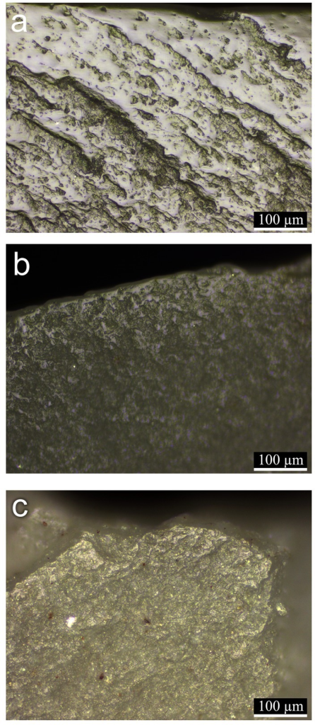 Micrographs showing nearly ripe semi-green cereal (wild oat) wear polishes observed on experimental tools: a: developed polish produced by sickle harvesting for 2 hours; b: polish developed to a lower degree produced by cutting with a blade held by hand for 1 hour; c: cereal prehension wear observed on the blade held by hand for cutting the cereals. Original magnification at all micrographs is x200.