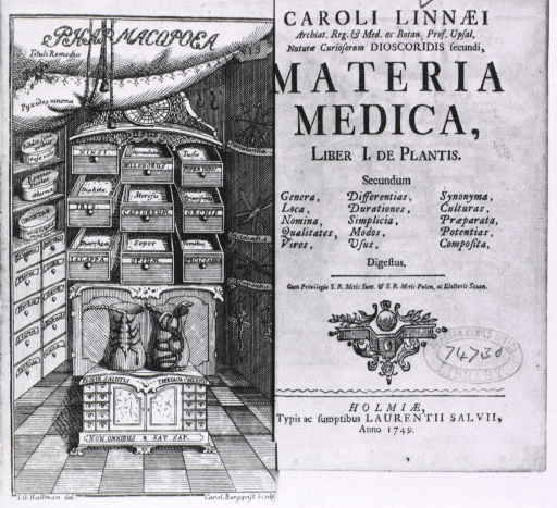 <p>A small pharmacy, with three sets of drawers, all labeled, one with plant name and medicinal use.</p>