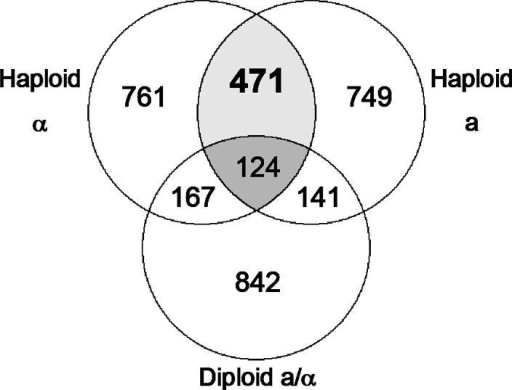 venn diagrams comparing the hs ir genes modulated in the various strains circles indicate