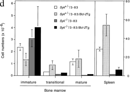 Positive selection of immature B cells. Flow cytometric analysis of cells  from radiation chimeras reconstituted with liver cells from Syk+/−/3-83 (Syk+/−),  Syk−/−/3-83 (Syk−/−), and Syk−/−/3-83/Bcl-2Tg (Syk−/− + Bcl-2) fetuses or from  an adult Syk+/−/3-83/Bcl-2Tg (Syk+/− + Bcl-2) mouse. In separate experiments chimeras made with Syk+/−/3-83/Bcl-2Tg fetal liver gave essentially the same results as  presented in this figure (data not shown). Chimeras made with Syk+/+/3-83 fetal  liver gave results indistinguishable from Syk+/−/3-83 chimeras (data not shown). (a)  The first column from the left shows the expression of B220 and the transgenic BCR  (3-83) on bone marrow cells; B220+3-83+ cells are boxed and their fraction as a percentage of all lymphoid cells is shown. The second column shows the expression of  IgMa and IgDa by B220+3-83+ cells with gating to show immature (IgM+IgD−),  transitional (IgM+IgDlow), and mature (IgM+IgDhigh) B cells; the percentage for each  gated population is expressed as a fraction of all lymphocytes. (b) The first column  shows the gating on immature (B220low3-83low) cells that was used to generate the  histograms of CD43 expression on B220+3-83+ bone marrow cells shown in the second column; percentages represent the fraction of gated immature B220low3-83low  cells that are CD43−. (c) Expression of B220 and 3-83 in the spleen; B220+3-83+  cells are boxed and their fraction as a percentage of all lymphoid cells is shown. (d) Mean numbers ± SEM of B220+3-83+ cells in the bone marrow (per  femur) and spleen are shown. In the marrow, these have been subdivided into immature (IgM+IgD−), transitional (IgM+IgDlow) and mature  (IgM+IgDhigh) B cells using the gating shown in a. Data in (a–c) are representative of at least six mice of each genotype. Absolute cell numbers in the marrow were determined using eight Syk+/−/3-83 mice, six Syk−/−/3-83 mice, three Syk+/−/3-83/Bcl-2Tg mice, and four Syk−/−/3-83/Bcl-2Tg mice;  data for the spleen cell numbers was determined using four Syk+/−/3-83 mice, four Syk−/−/3-83 mice, three Syk+/−/3-83/Bcl-2Tg mice, and two  Syk−/−/3-83/Bcl-2Tg mice.