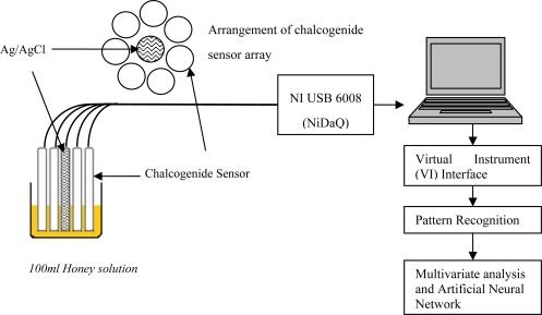 E-tongue setup for headspace evaluation of honey, sugar   Open-i