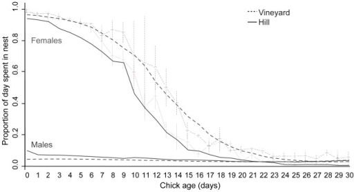 Proportion of the day that both adult falcons were in attendance at the nest as chick age increased in vineyard (dotted lines) and hill (solid lines) nests.Thin grey lines show the raw data for both parents combined, with +SEM for vineyard nests and the data mean –SEM for hill nests. Thick lines show the fitted values from a GLMM including significant second and third order polynomial terms for female falcons (black lines) and from a GLMM including significant second order polynomial terms for male falcons (dark grey lines).