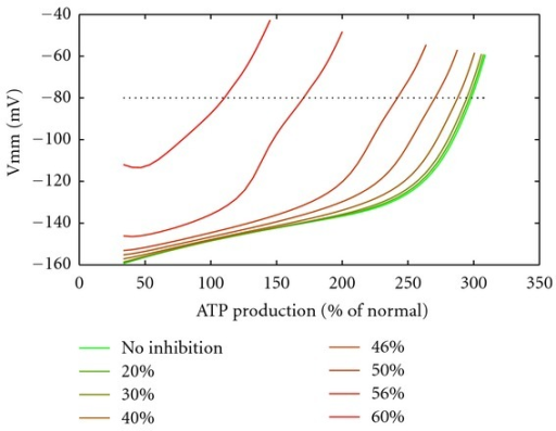 Mitochondrial membrane potential characteristics at inhibition of KGDHC. Mitochondrial membrane potential versus the ATP production rate at different inhibition levels of KGDHC. Dotted line: −80 mV membrane potential level.