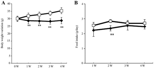 Food consumption and body weight variation of C57BL/6J mice fed high-fat chow. Variations in (A) body weight and (B) food consumption. White squares, mice fed high-fat chow; black circles, mice fed high-fat chow plus ezetimibe. The data are expressed as the means ± standard deviation (n=7). **P<0.01, vs. HF group. W, week.