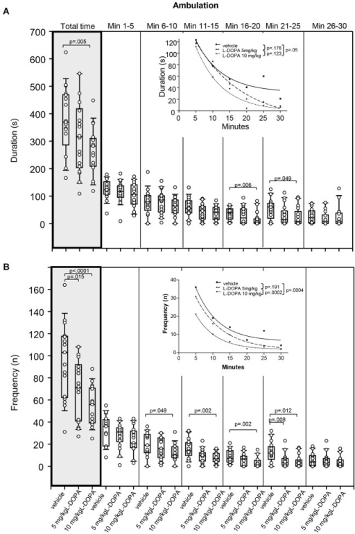 Ambulation. (A) Duration (s) and (B) frequency (n) after vehicle (0.9% saline), 5 mg/kg L-DOPA and 10 mg/kg L-DOPA. The figure shows box and whisker plots of median ambulation durations during the whole time of testing (gray shade) and in the individual 5-min time bins. 25-/75-percentiles are given in the boxes, while 5-/95-percentiles are represented by the whiskers. The circles represent the individual animals. For significant between-group differences the respective p values are given (two-tailed Mann–Whitney U test, α = 0.0167 after Bonferroni correction). Insets: T-b curves obtained by plotting median values of ambulation durations (A) and ambulation frequencies (B) against time and fitting exponential functions (y(t) = a * exp (−K * x) + plateau with a, value at the time t; −K, rate constant; t, time) to these data. For the comparisons between treatment groups (two-tailed F test, α = 0.0167 after Bonferroni correction) the respective p values are given.