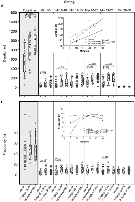 Sitting. (A) Duration (s) and (B) frequency (n) after vehicle (0.9% saline), 5 mg/kg L-DOPA and 10 mg/kg L-DOPA. The figure shows box and whisker plots of median sitting durations during the whole time of testing (gray shade) and in the individual 5-min time bins. 25-/75-percentiles are given in the boxes, while 25-/95-percentiles are represented by the whiskers. The circles represent the individual animals. For significant between-group differences the respective p values are given (two-tailed Mann–Whitney U test, α = 0.0167 after Bonferroni correction). Insets: T-b curves obtained by plotting median values of sitting durations (A) and sitting frequencies (B) against time. Linear functions (y = ax + b with a, slope and b, y-intercept) were fitted to the plots of sitting durations, whereas quadrtatic functions (y = a + bx + cx2 with a, absolute term; bx, linear term; cx2, quadratic term) were fitted to the plots of sitting frequencies. For the comparisons between treatment groups (two-tailed F test, α = 0.0167 after Bonferroni correction) the respective p values are given.