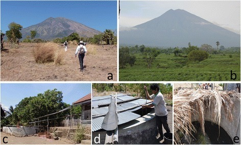Landscape of the eastern slope of Mt. Agung (a, b) and water tanks for dry season (c, d, e). Dry season in September 2014 (a) and rainy season in January 2012 (b). Right half of the mountain (a): the eastern slope is completely brown. Southern slope in the left half is better in green, Western slope is completely green for all seasons (not shown).
