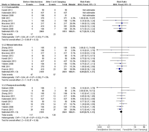 Meta-analysis of maternal primary outcomes.