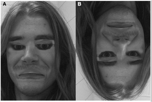 An example of bizarre experience elicited by faces whose spatial elements are denaturalized. (A) In the so-called Thatcher Illusion, the eyes and mouth of the upright face are turned upside-down. (B) The feeling of bizarreness produced by the manipulation disappears when the image is inverted.