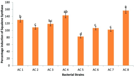 Efficiency of eight bacterial strains (i.e., AC1, AC2, AC3…. AC8) to induce transcription of SS in Barley plants. Data were statistically analysed through ANOVA and DMRT at p ≤ 0.05. Statistical analyses were performed at p ≤ 0.05 using Add-on package of MS-Excel, DSAASTAT (Onofri, Italy).
