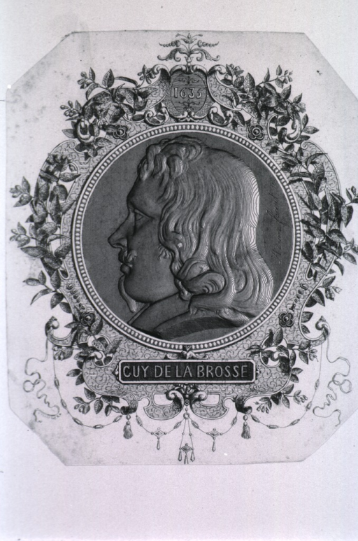 <p>Medallion; head and shoulders, left profile; with decorative border.</p>