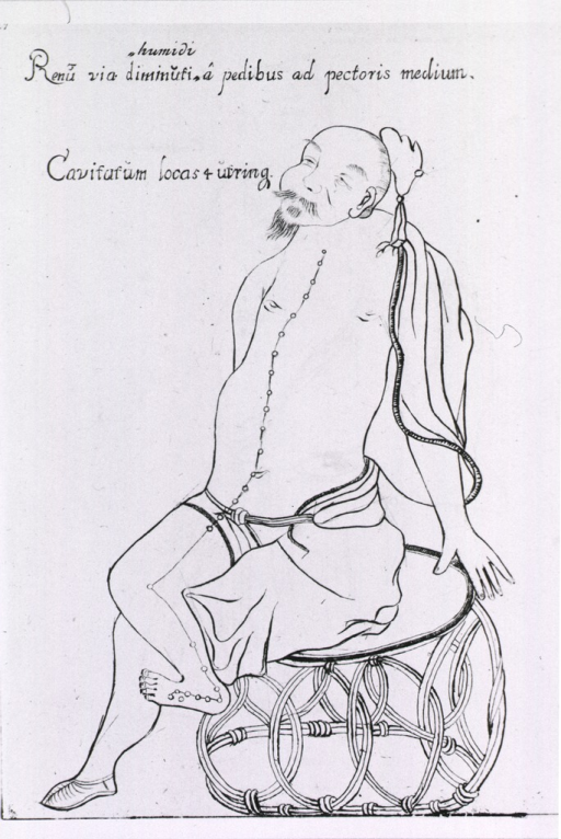 <p>Meridian and acupuncture points for treatment of kidney disorders illustrated on a seated, beared Oriental.</p>