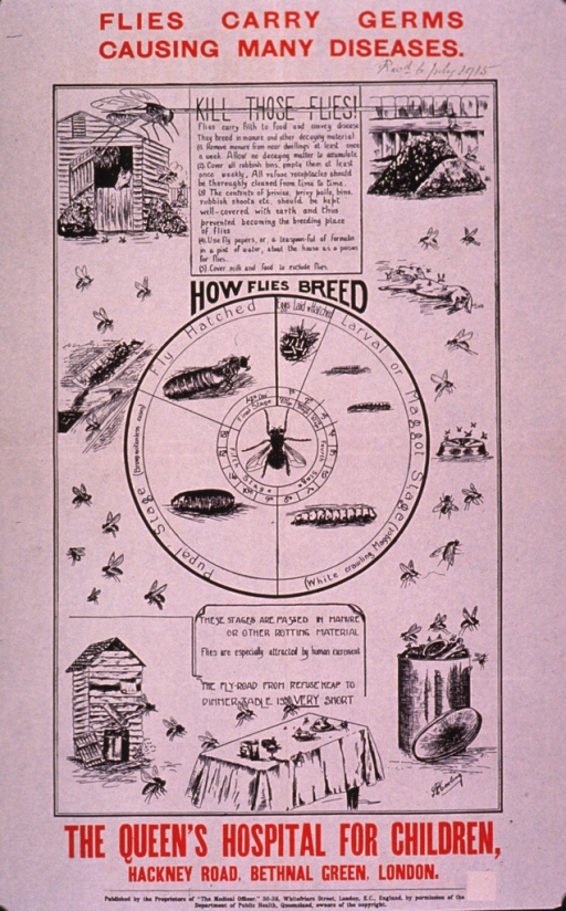 <p>Predominantly white poster with red and black lettering.  Title at top of poster.  Handwritten date near upper right corner notes the item was received in July 1915.  Visual images are illustrations of the fly life cycle, places flies come into contact with germs (a barn, a manure pile, an outhouse, a dead animal, etc.), and a table set with food.  Notes near top and bottom of poster.  Publisher information at bottom of poster.</p>