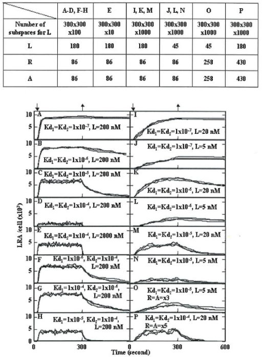 Simulation of LRA formation. The number of subspaces for L and the number of molecules were set as shown in the upper Table. The dissociation constants of LR (Kd1) and LRA (Kd2) are indicated in the Figure. The probabilities of LR and LRA formations were set to 0.67. L was added immediately before the 1.2 × 106th step (down arrow, 24 seconds). After the 1.5 × 107th step (upper arrow, 300 seconds), L was allowed to pass through the borders of the simulation box for L, except for the cell surface, and L was deleted in the outside area. Three simulation results are represented.