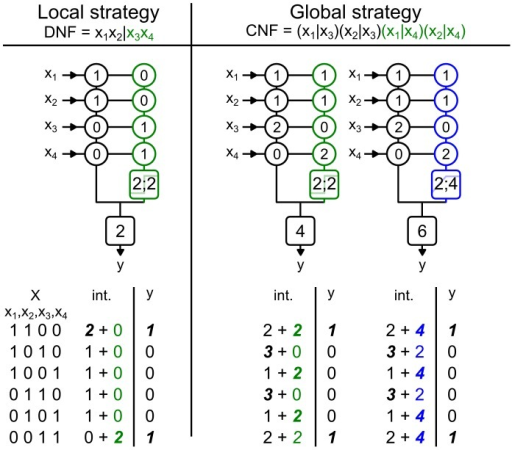 Two strategies to implement a linearly non-separable function.On top, the name of two possible strategies to implement the feature binding problem (FBP) based either on its DNF or CNF expression: the colored part of these expressions is the term or the clauses implemented by the dendritic sub-unit. Below, three schematics which represent parameter sets implementing FBP using either a spiking (green) or a saturating (blue) dendritic sub-unit. In circles are the value of synaptic weights (Black∶linear, green∶spiking, blue∶saturating); in colored squares (green∶spiking; blue∶saturating) are the parameters of the dendritic activation function [threshold;height], in black squares is the threshold  of the somatic sub-unit. Left, the local implementation strategy; Right, the global implementation strategy; note that a neuron cannot implement the FBP using the local strategy with a saturating dendritic sub-unit. Bottom, truth tables where the  column is the input vectors,  columns describe the neuron's input-output function, here the FBP. The int. column is the result of synaptic integration of each dendritic sub-unit (black∶linear, green∶spiking, blue∶saturating). In bold and italic are the maximum possible outputs for each sub-unit, note that for the global strategy a maximal output from a dendritic sub-unit may not trigger a somatic spike.