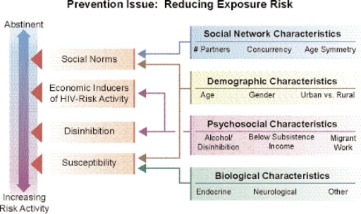 "General and specific risk factors for infection. Multiple factors influenced by the use of alcohol increase the risk for HIV infection. These factors interact to increase both the general and specific contexts for infection events. Social networks, as well as demographic, psychosocial, and biological characteristics are general factors often used to target preventive interventions among alcohol users. However, these categories and ""compartments"" interact to influence mediators of increasing risk at the social level, such as social norms and economic inducers of HIV risk and individual-level factors related to disinhibition and biological susceptibility for infection. Scribner and colleagues (pp. 179–183, in this issue) and Kalichman (pp. 184–194, in this issue) describe the importance of these multilevel models for prevention."