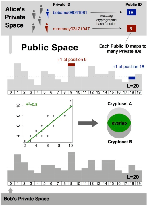 Cryptosets are shareable summaries of private data, from which estimates of overlap can be computed.They are constructed using a cryptographic hash function to transform private IDs from a dataset into a limited number of public IDs, and then combining these public IDs into a histogram. From this histogram (about 1000 IDs long in practice), the overlap between private datasets can be estimated in a public space. The security of cryptosets relies on the fact that several private IDs map to each public ID. The estimates are based on the Pearson correlation between cryptosets, and can only measure overlap at a predetermined resolution.