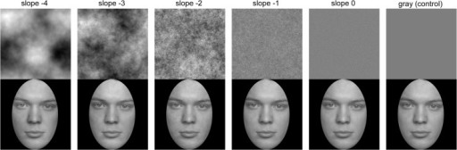 Stimuli used in Study 2A.Top row: Random phase patterns with different slopes (as indicated) of the radially averaged Fourier power spectrum, and a mid-grey control image. Bottom row: Stimuli used in Study 2A. The composite stimuli consists of the original face image (FACES database [59]) with the respective image of the top row superimposed at an opacity of 15% and a black oval window. Note that differences between the conditions are subtle and might be invisible due to the small size and low resolution of the images here. Images of higher resolution are provided as supplemental material (S1 Fig).
