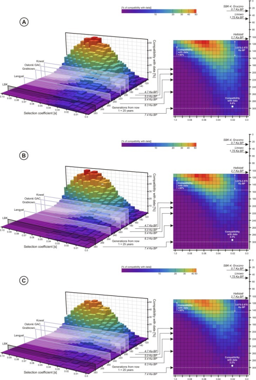 Each 3D plot together with its 2D projection presents probability of a scenario with given selection coefficient and the T allele introduction time, assuming variable population size (see S1 Fig. for the shape of the size curve).The height/color of each bar represents the percentage of Wright-Fisher curves (number per 1000) falling into appropriate confidence intervals shown in Table 2: A—the T allele, B—LP, C—the T allele and LP jointly.